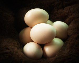 Acropolis Cuisine-egg-image-Chefs-Table